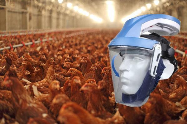 Adembescherming veehouderij kippen KITE Standaard - Arbin Safety
